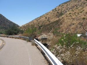 Father Junipero Serra Trail