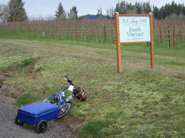 Top of a long hill, and here's Zenith Vineyard