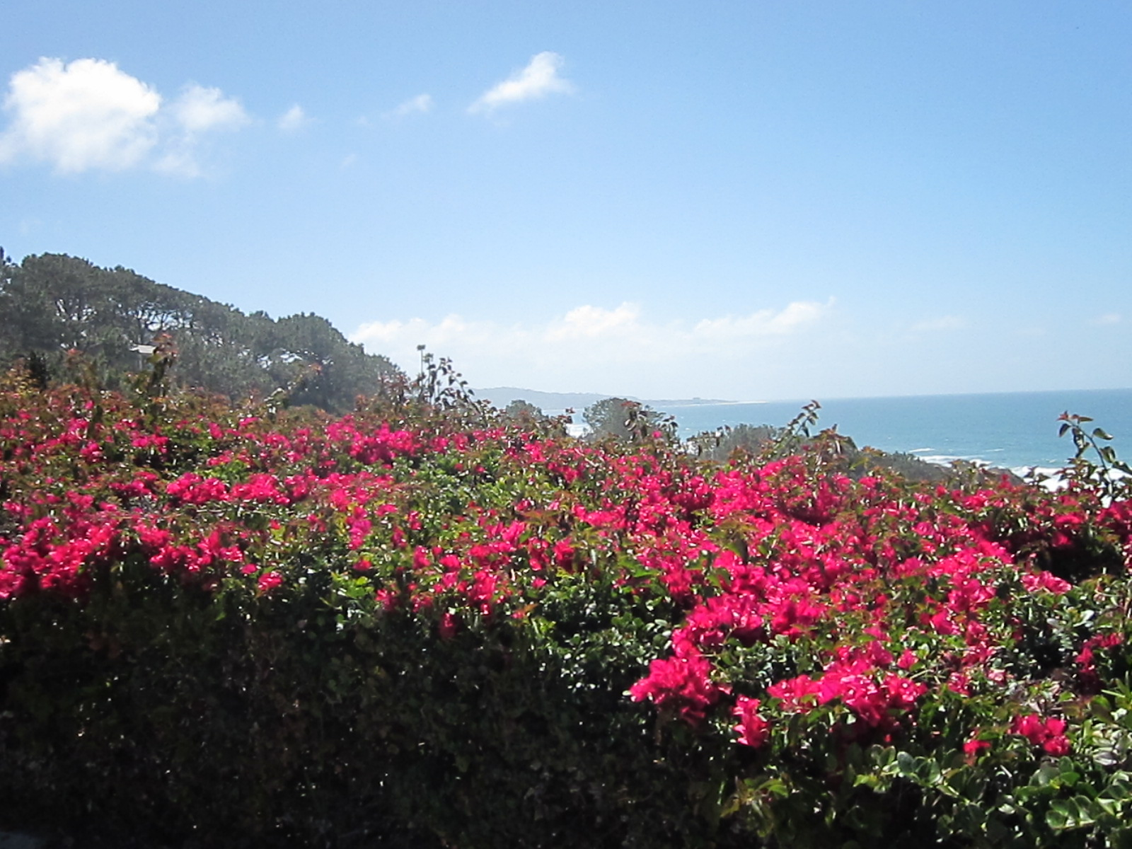 View from the end of the bike trail in Del Mar
