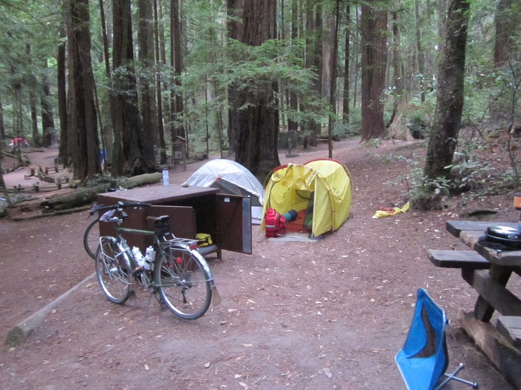 Butano State Park campground